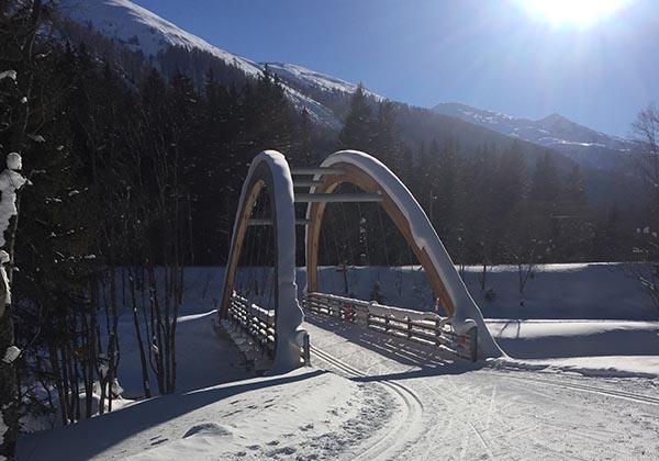 Rottenbrücke Pischäwald